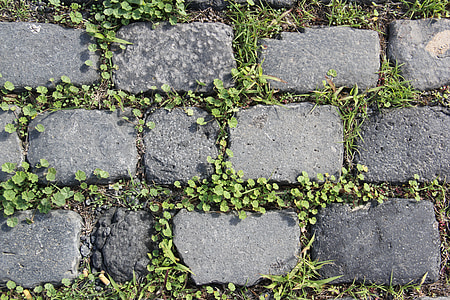 gray concrete brick pathway at daytime