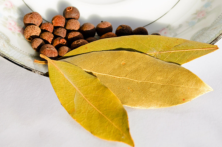 brown dry leaves and nuts