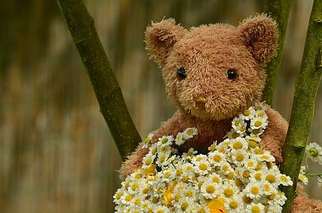 macro photography of brown bear plush toy