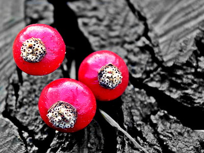 three red berries