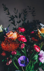 purple, pink, orange, and red flowers