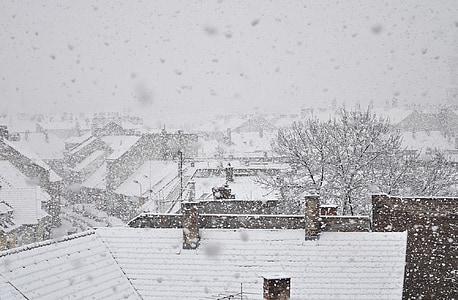 snow falling during daytime