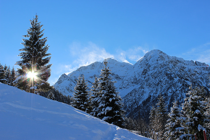 snow covered mountain with trees during daytime