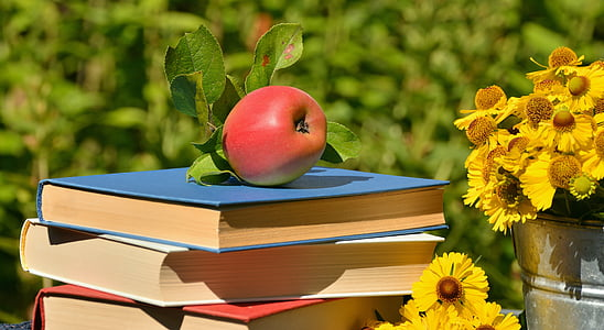 red apple on blue covered book