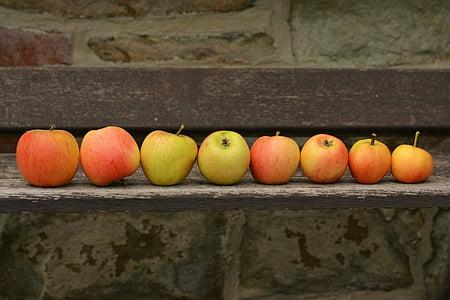 pile of ripe Apples