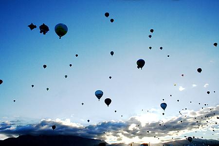 black and white hot air balloon