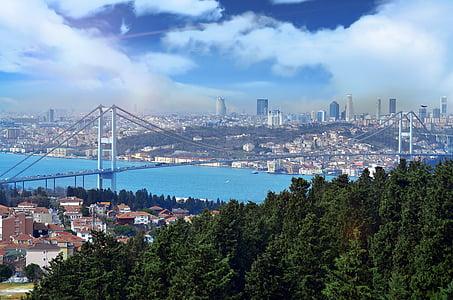 bird's eye view of city under gray sky