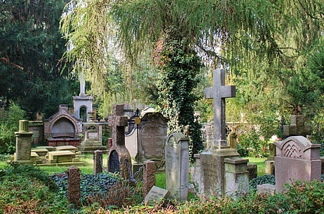 gray concrete tombstones