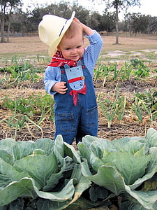 toddler's wearing cowboy suit standing near cabbage plant