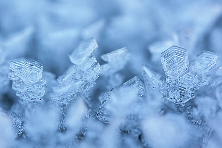 selective photography of snowflakes