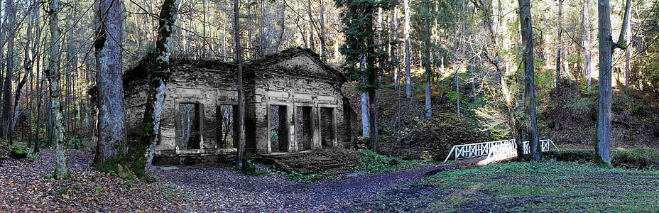 abandoned concrete house in forest at daytime