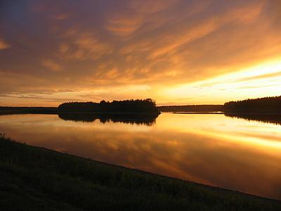 silhouette of tree on lake