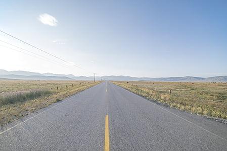 photo of empty road between grass