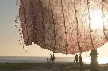 people walking on seashore