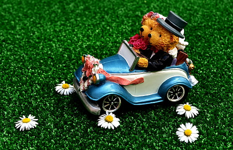 bears riding car toy