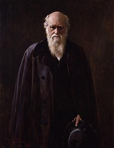 bearded man wearing blue coat