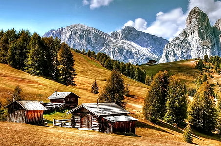 brown wooden house near mountains during daytime