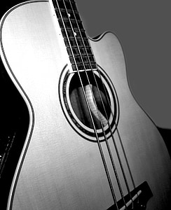 greyscale photography of guitar