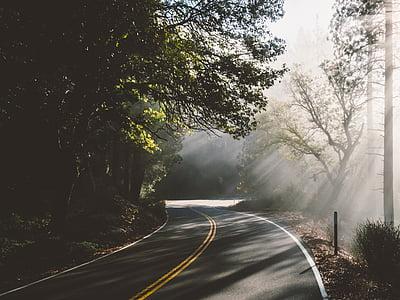 photography of asphalt road at daytime
