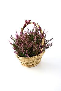 pink flowers arrangement in brown basket