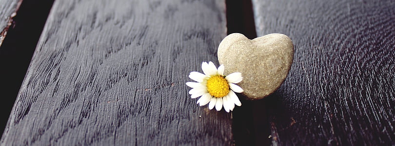 heart-shaped gray stone on wooden panels