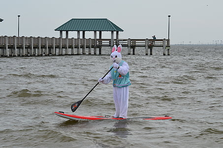 person wearing rabbit costume riding paddle board