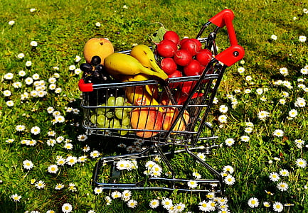 variety of fruits in shopping cart