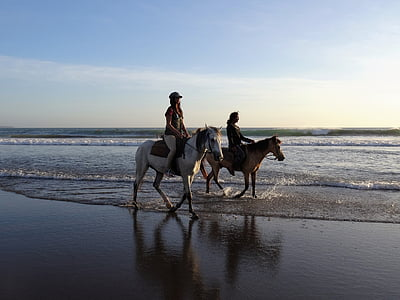 two woman riding horse near seashore during daytime
