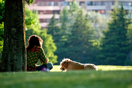 woman sitting under tree with dog