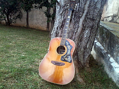 brown guitar on grey tree trunk