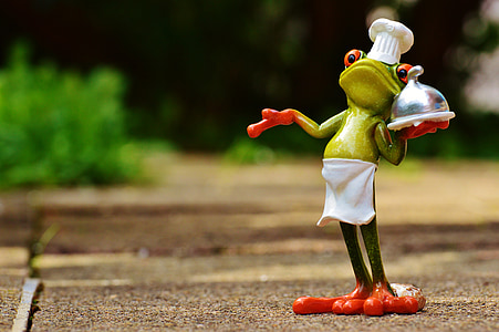 frog chef photography