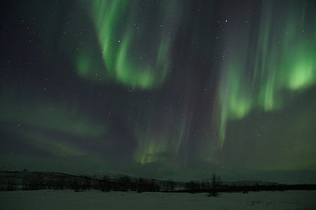 landscape photo of aurora borealis