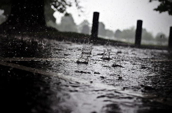 rain, raindrops, seasons, water, macro, element
