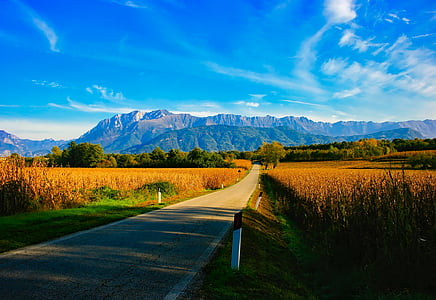 pavement towards mountain