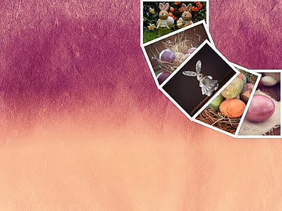assorted-color-and-pattern photo graphic art