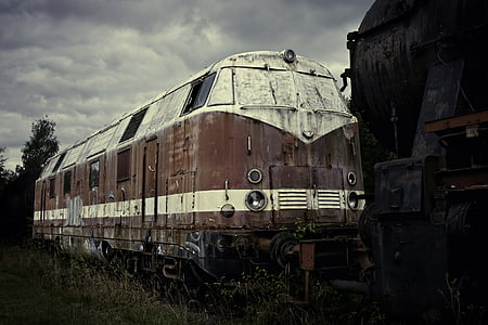 white and red train near green grass field under black sky