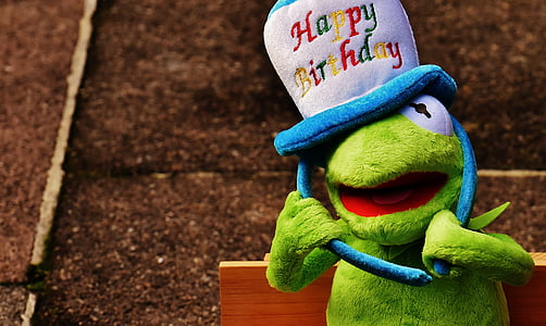 Kermit frog with happy birthday hat plush toy
