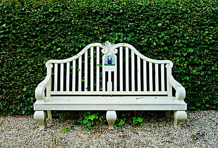 empty bench leaning on hedge
