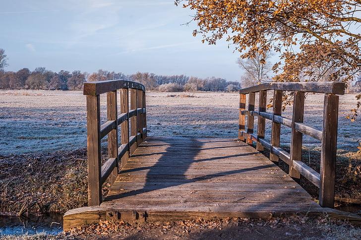 brown wooden bridge beside tree
