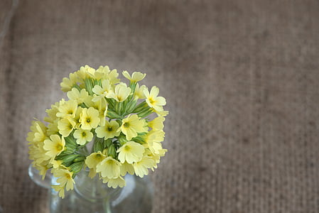 yellow petaled flower arrangement in clear vase