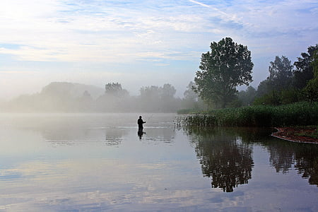silhouette of man on body of water walking through green leaf tree