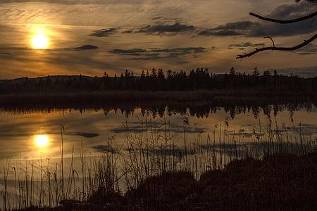 sun over pine forest near a lake