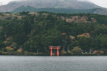 red torii beside body of water