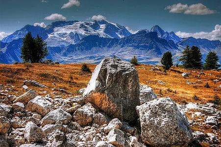 white rocks on brown grass field