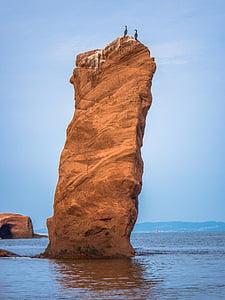 two bird on rock under blue sky