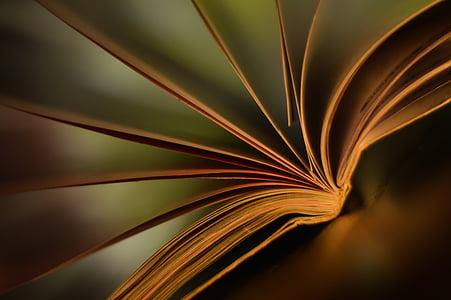 book, screen, climate, mood, range, light