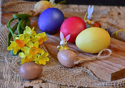 five assorted-color eater eggs on table