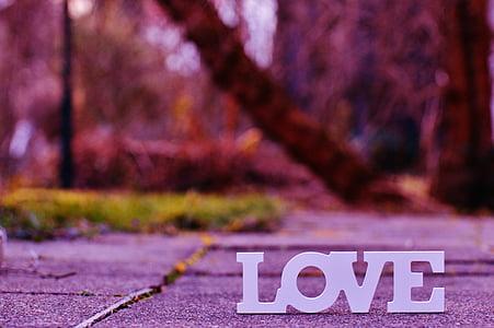 photo of love freestanding letter