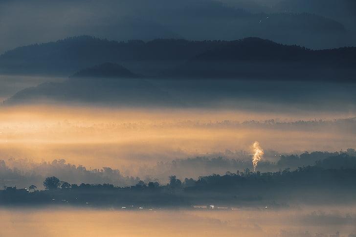 landscape, fog, sunrise, forest, foggy, light