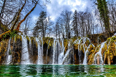 green leaf trees above falls